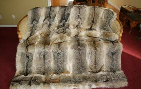 Coyote Fur Bed Covering